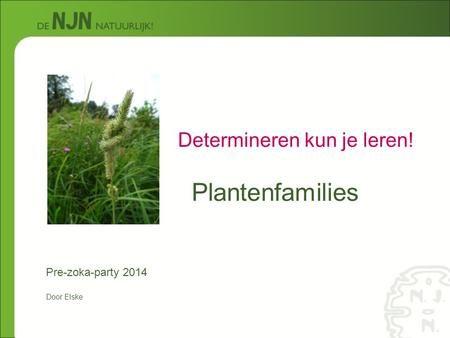 Plantenfamilies Determineren kun je leren! Pre-zoka-party 2014 Door Elske.