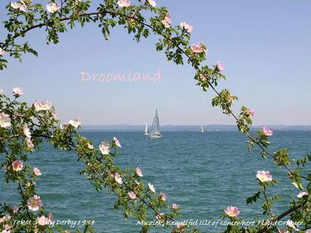 Droomland Tekst :Willy Derby 1934 Muziek: Beautiful Isle of somewhere_Floyd Cramer.