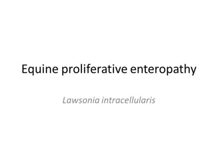 Equine proliferative enteropathy Lawsonia intracellularis.