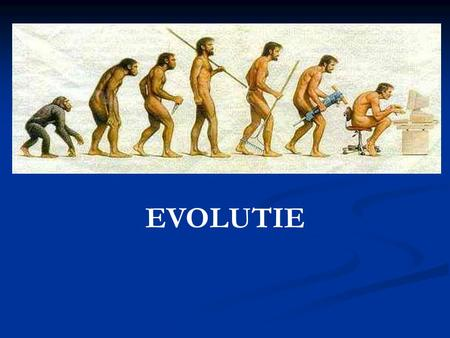 EVOLUTIE. Begin in … Begin in … Oost – Afrika.