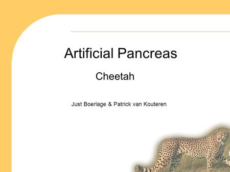 Artificial Pancreas Cheetah Just Boerlage & Patrick van Kouteren.