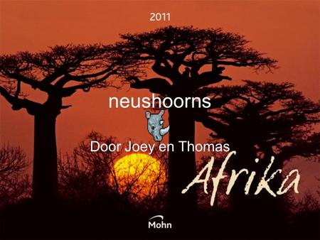 Neushoorns Door Joey en Thomas.