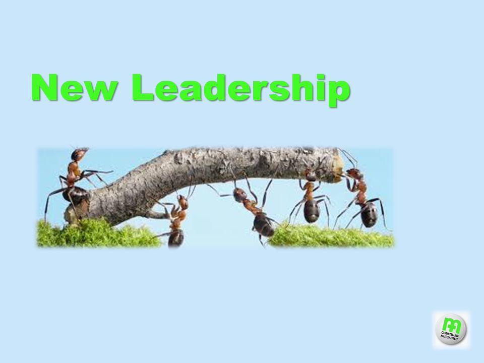 13 Gedeeld leiderschap Leaderschip partagé Verbinding Connection Authenticiteit Authenticité