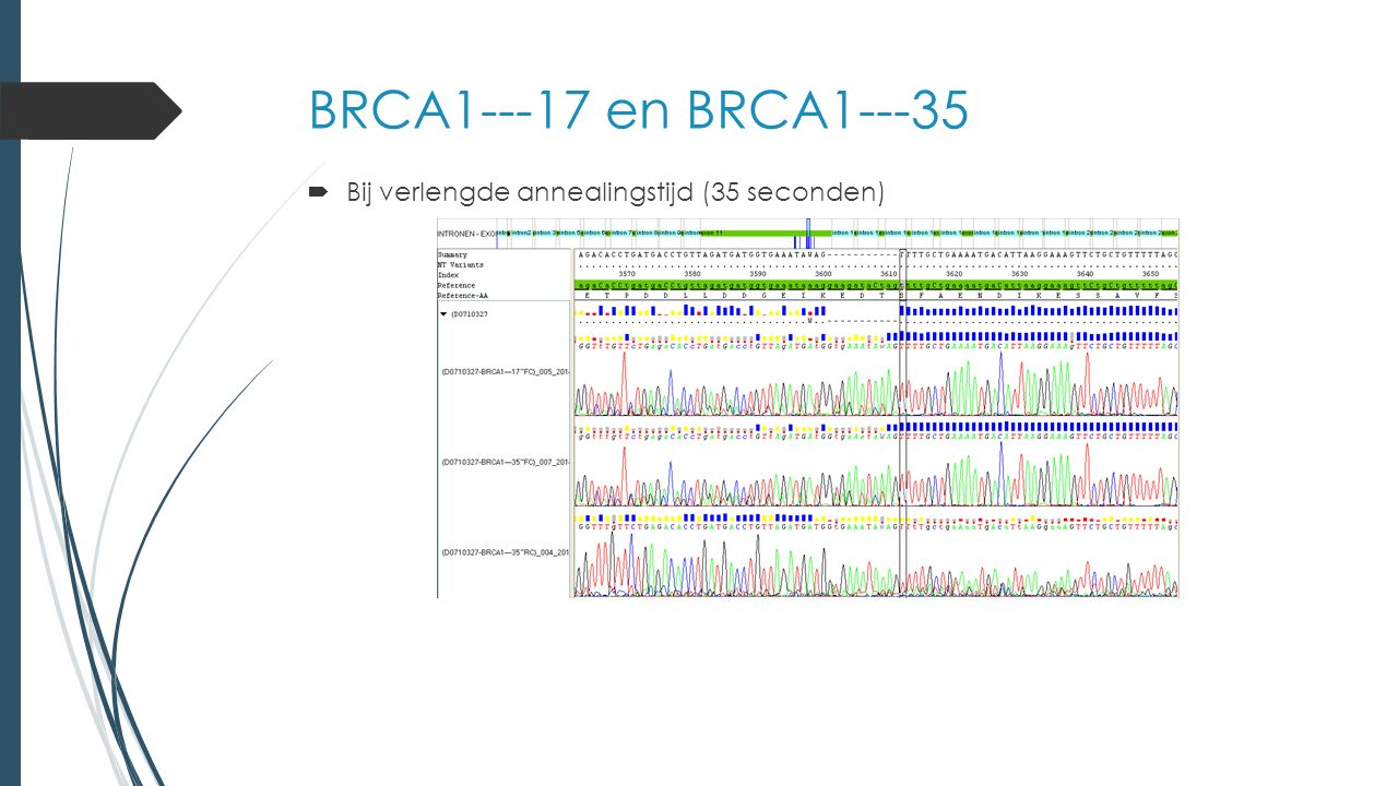 Resultaten aangepaste condities Gewone Ford-assay Ford-assay met gedegenereerde base SERPINF1---5SERPINF1---9 Optimale temperatuur (55,3°C en 59,2°C) Heterozygoot Verlengde annealingstijdLicht heterozygoot Heterozygoot BRCA1---17BRCA1---35 Optimale temperatuur (54,3°C) Heterozygoot Verlengde annealingstijdLicht heterozygoot BRCA1---20BRCA1---52 Optimale temperatuur (57,4°C) Licht heterozygoot Heterozygoot Verlengde annealingstijd HomozygootHeterozygoot