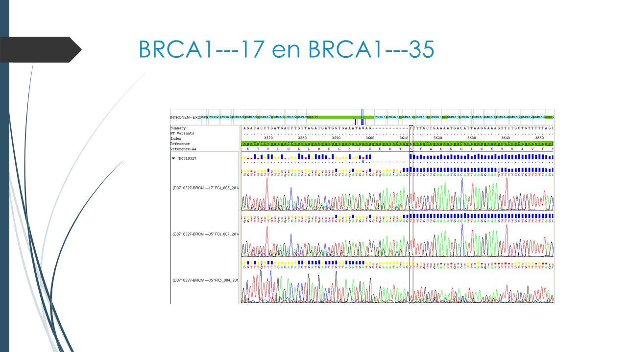 BRCA1---20 en BRCA1---52