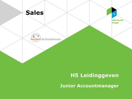 Sales H5 Leidinggeven Junior Accountmanager.