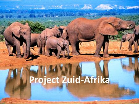 Project Zuid-Afrika.