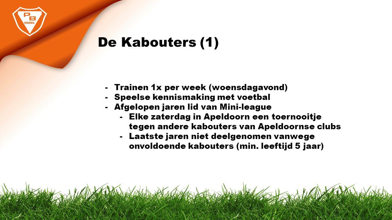 De Kabouters (2) - Wat willen we dit jaar.