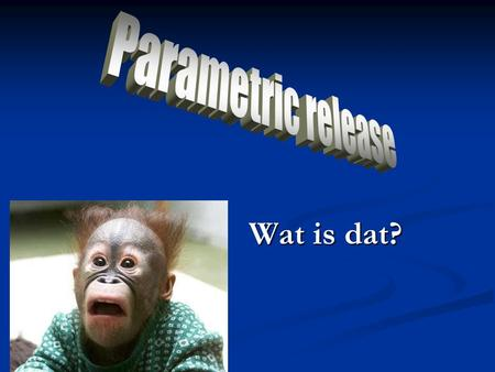 Parametric release Wat is dat?.