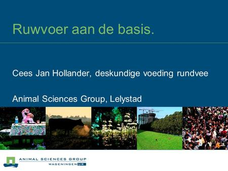 Ruwvoer aan de basis. Cees Jan Hollander, deskundige voeding rundvee Animal Sciences Group, Lelystad.