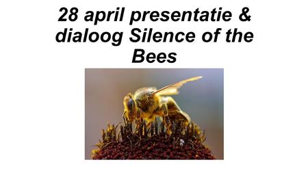 28 april presentatie & dialoog Silence of the Bees.