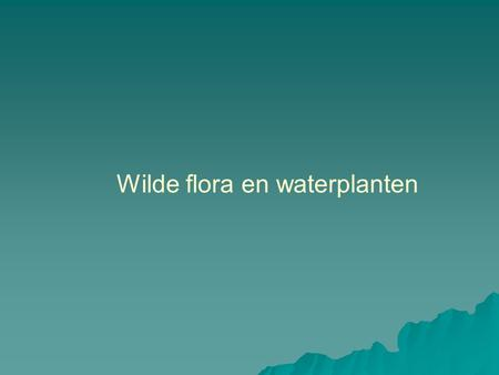 Wilde flora en waterplanten