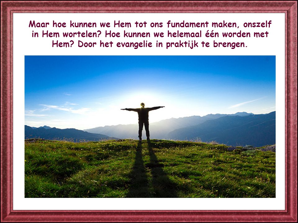 Maar hoe kunnen we Hem tot ons fundament maken, onszelf in Hem wortelen.