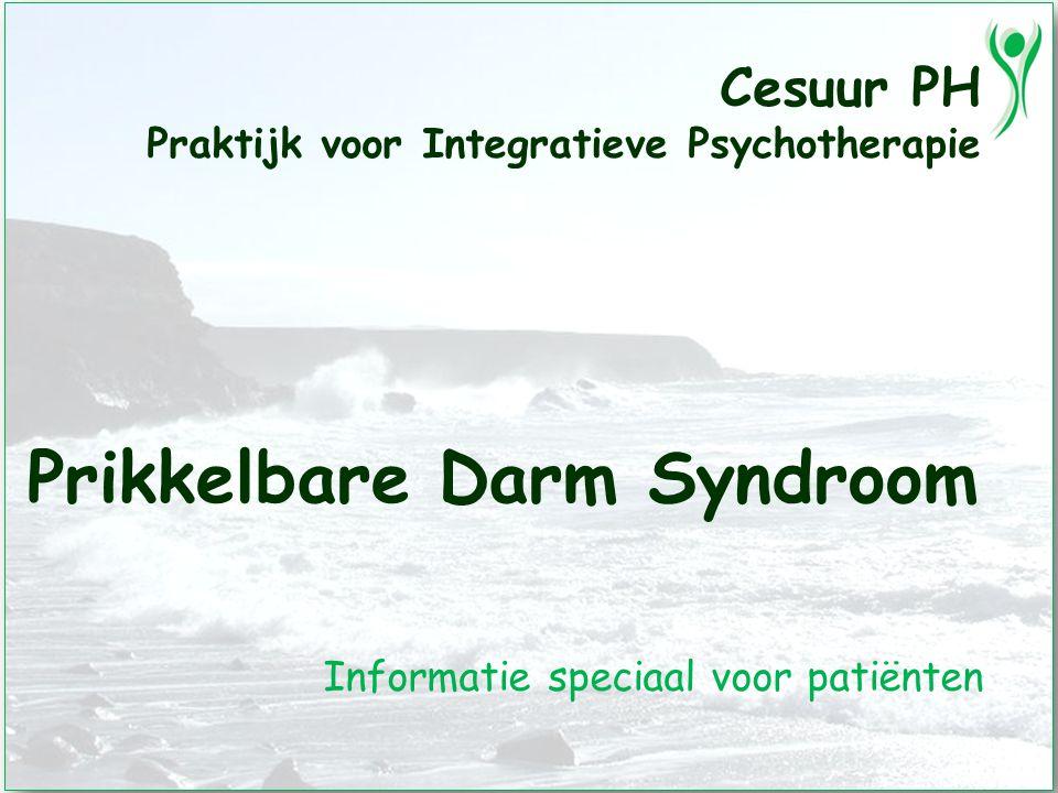 Cesuur PH Praktijk voor Integratieve Psychotherapie Prikkelbare Darm Syndroom Informatie speciaal voor patiënten