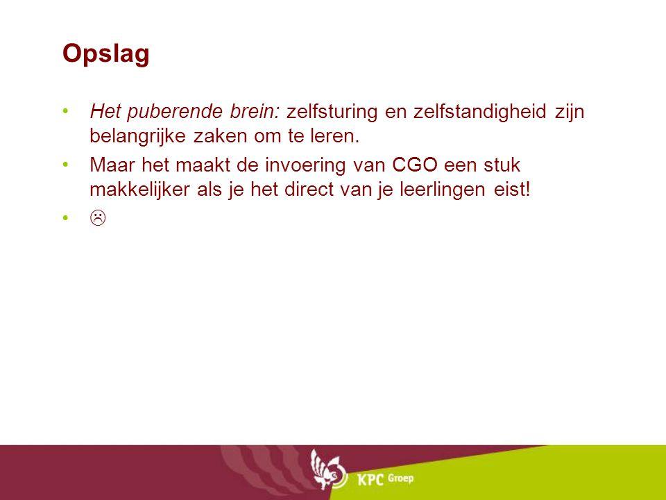 Opslag •Het puberende brein: zelfsturing en zelfstandigheid zijn belangrijke zaken om te leren.