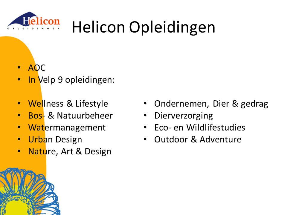 Netwerkschool Helicon MBO Velp De student staat bij ons centraal.