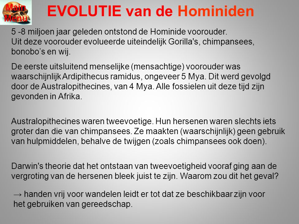 This represents one possible interpretation of the fossil data: Ontstaan vd mens Ardipithecus ramedus Australopithecus anamensis A.