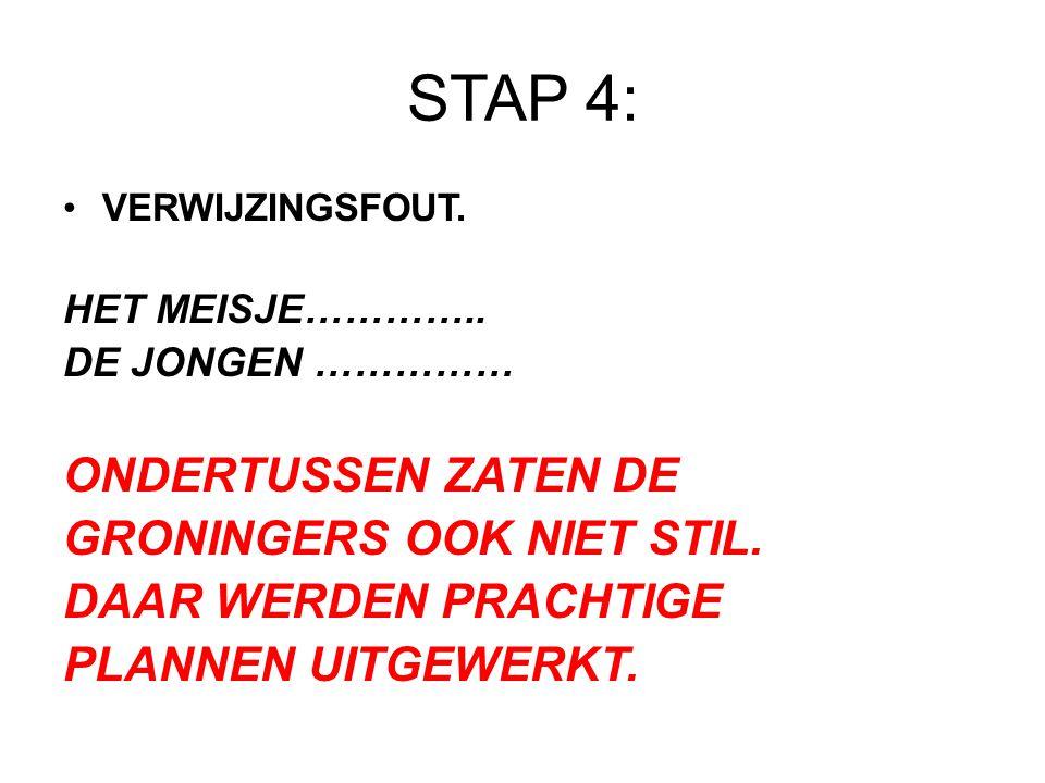 STAP 4: ONDERTUSSEN ZATEN DE GRONINGERS OOK NIET STIL.