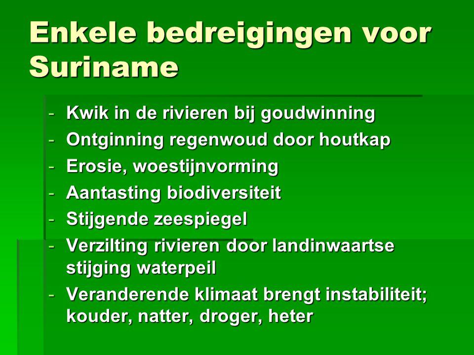 Duurzame ontwikkeling in Suriname  Wat verstaat stichting d'ONS onder duurzame ontwikkeling in Suriname.