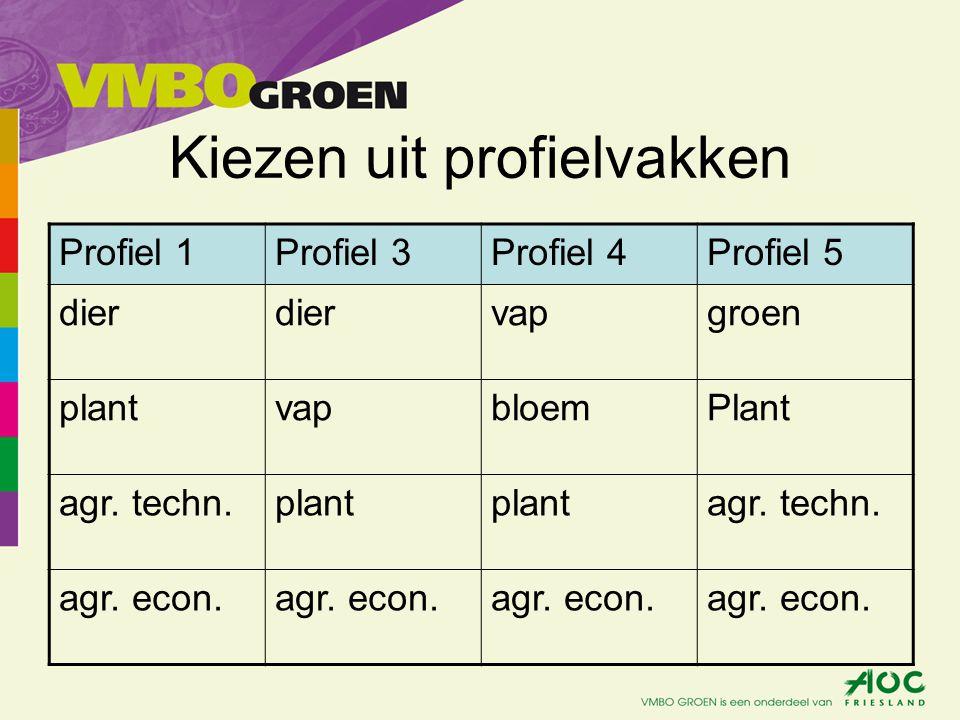 BL: - CSPE in 1 praktijkvak.- Het praktijkvak waarin CSPE wordt gedaan mag geen agr.