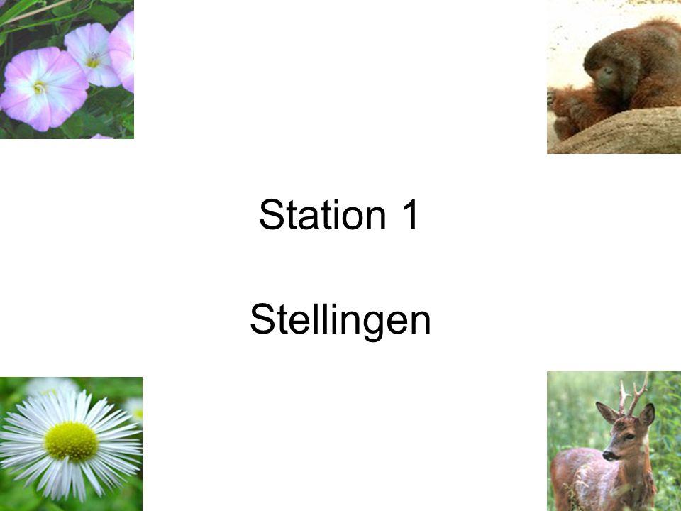 Station 2 Er zijn al miljoenen soorten uitgestorven in de loop van de geschiedenis.