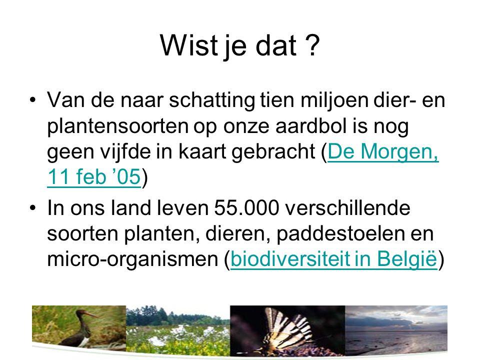 Tot zo ver het goede nieuws De helft van de soorten in België is met uitsterven bedreigd.
