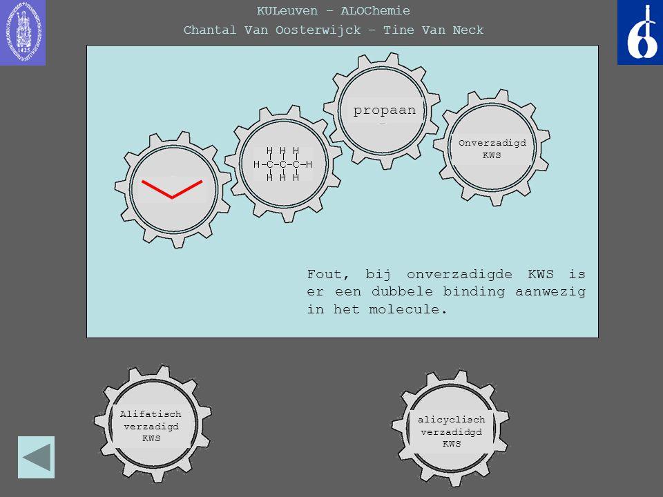 KULeuven – ALOChemie Chantal Van Oosterwijck – Tine Van Neck Deze verbinding behoort inderdaad tot de verzadigde KWS omdat het alleen maar enkelvoudige bindingen bevat, maar het is geen cyclische verbinding.