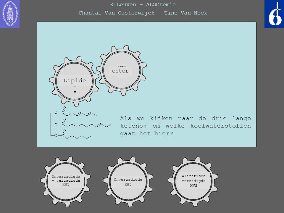 KULeuven – ALOChemie Chantal Van Oosterwijck – Tine Van Neck Fout: voor een carbonzuur zou je de volgende functionele groep moeten terugvinden: Lipide esterketon Carbon- zuur