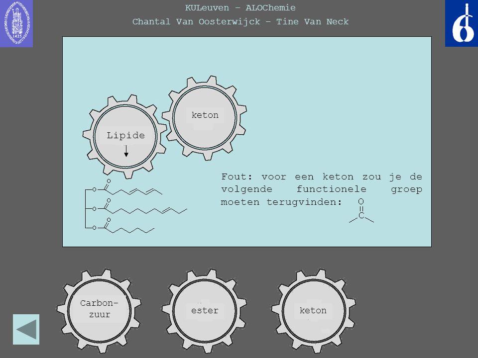 KULeuven – ALOChemie Chantal Van Oosterwijck – Tine Van Neck Welke keten is een verzadigd KWS.
