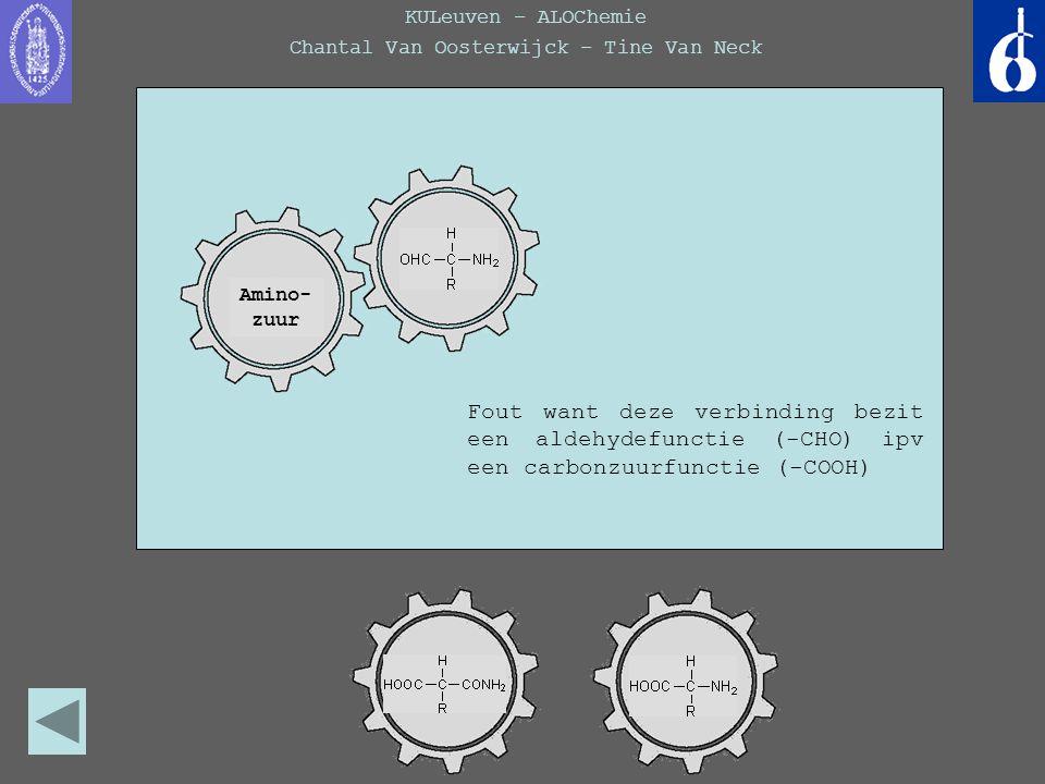 KULeuven – ALOChemie Chantal Van Oosterwijck – Tine Van Neck Amino- zuur Fout want deze verbinding bezit een amidefunctie (-CONH 2 ) ipv een aminefunctie (-NH 2 ) Amino- zuur