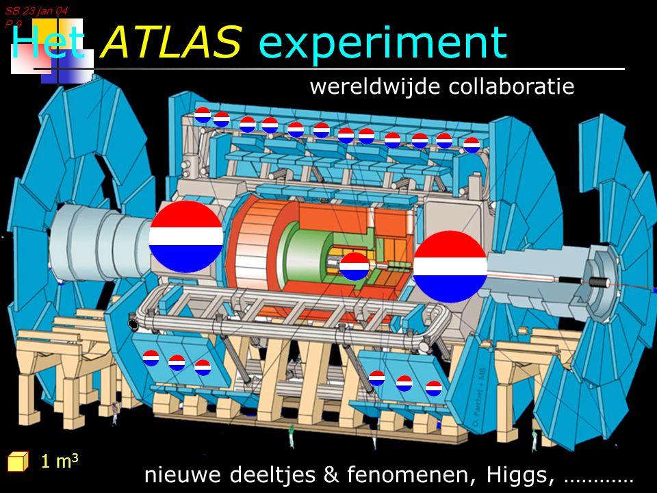 SB 23 jan 04 P 10  +    +   invariante massa (GeV) Aantal gebeurtenissen ppH…  ZZ *  +    +    Massa deeltje: de Higgs computing (GRID) & fysica Higgs signaal in 2008?