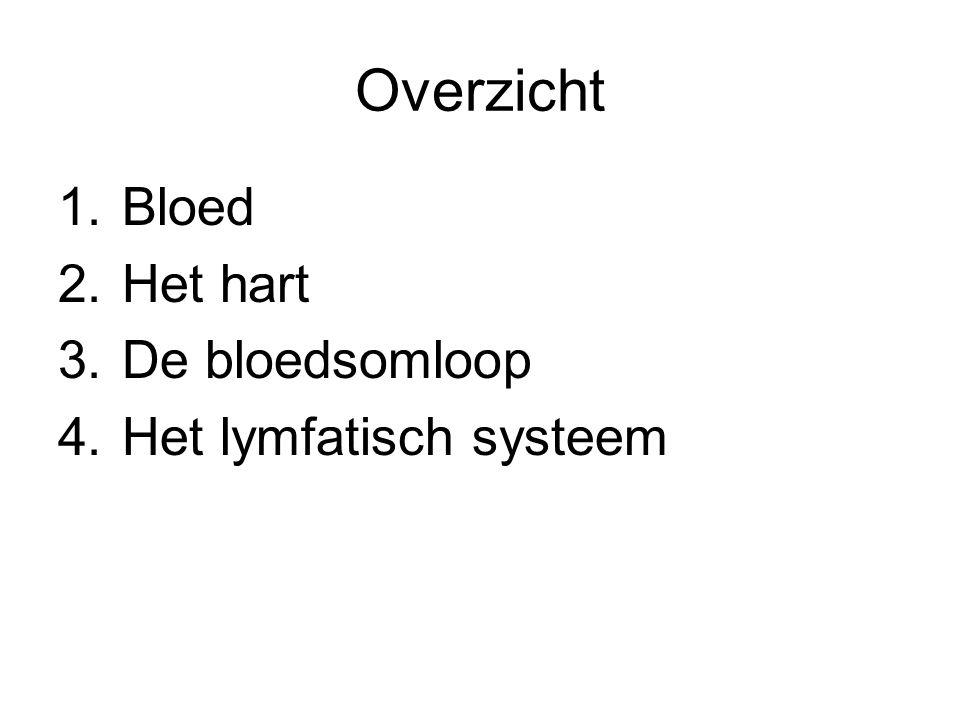 Overzicht 1.Bloed 2.Het hart 3.De bloedsomloop 4.Het lymfatisch systeem