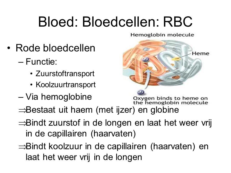 Bloed: Bloedcellen: WBC Witte bloedcellen –Beschermen tegen indringers –4000-10.000/  l bloed –Monocyten (Macrofagen genoemd als ze buiten de bloedsomloop zijn) –Lymfocyten T-lymfocyt; controle, virusinfecties bestrijden B-lymfocyt; productie antistoffen –Granulocyten Neutrofiel Eosinofiel basofiel