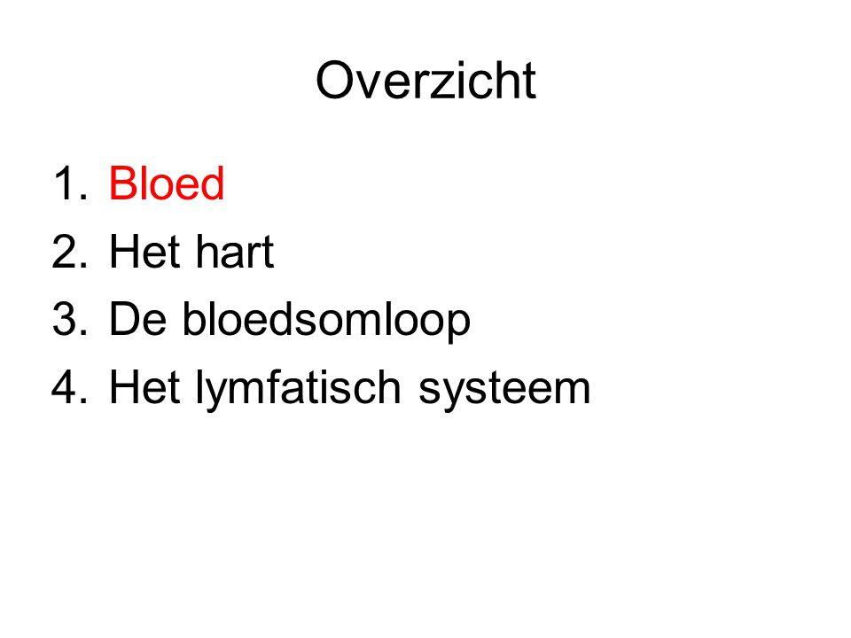 1.Bloed Functie Plasma Bloedcellen Bloedgroepen