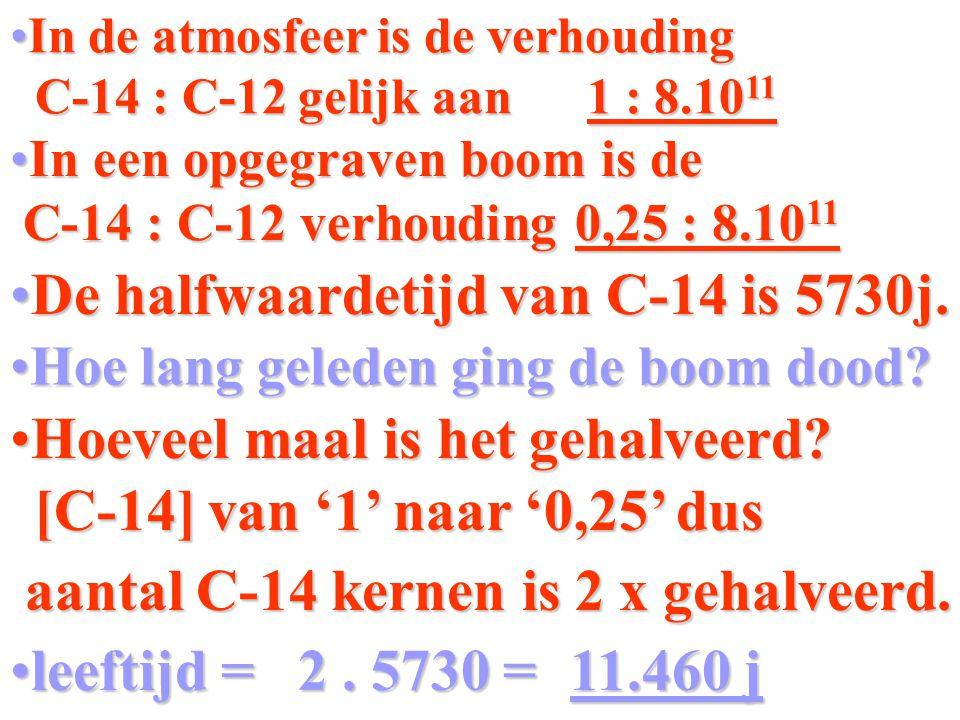 Invullen en oplossen van de formule N(t) = 0,25 N(0) = 1 t 1/2 = 5730 jaar 0,25 = 1 * 2 1     t 5730 = 0,25 2 1     t 5730 t * log 0,5 = log 0,25 t 5730 = 2 t = 2 * 5730 = 11460 jaar