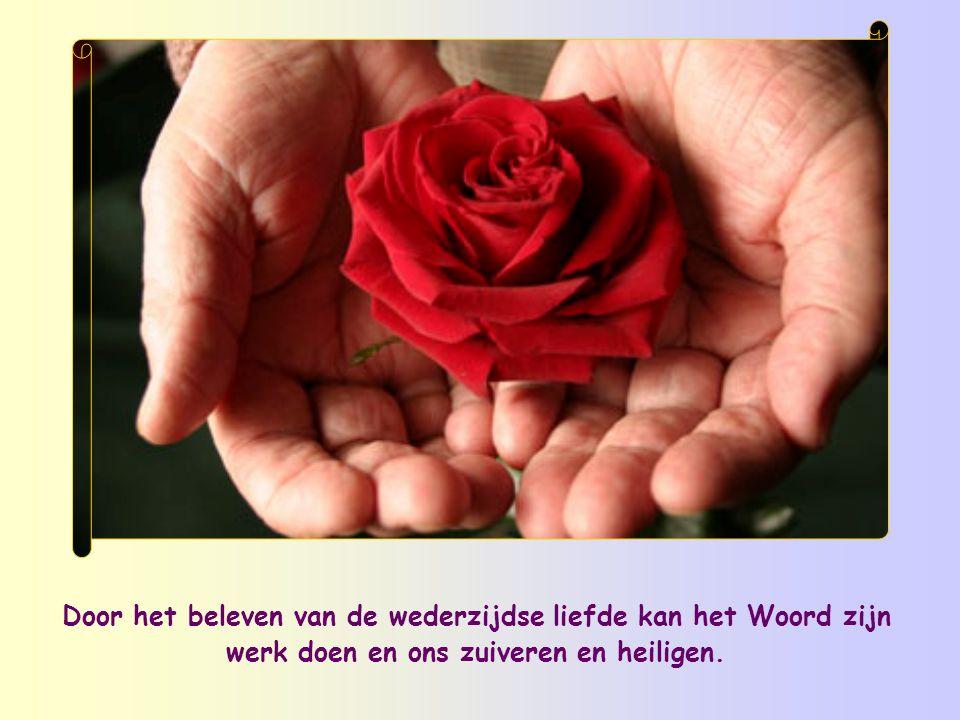 Door het beleven van de wederzijdse liefde kan het Woord zijn werk doen en ons zuiveren en heiligen.
