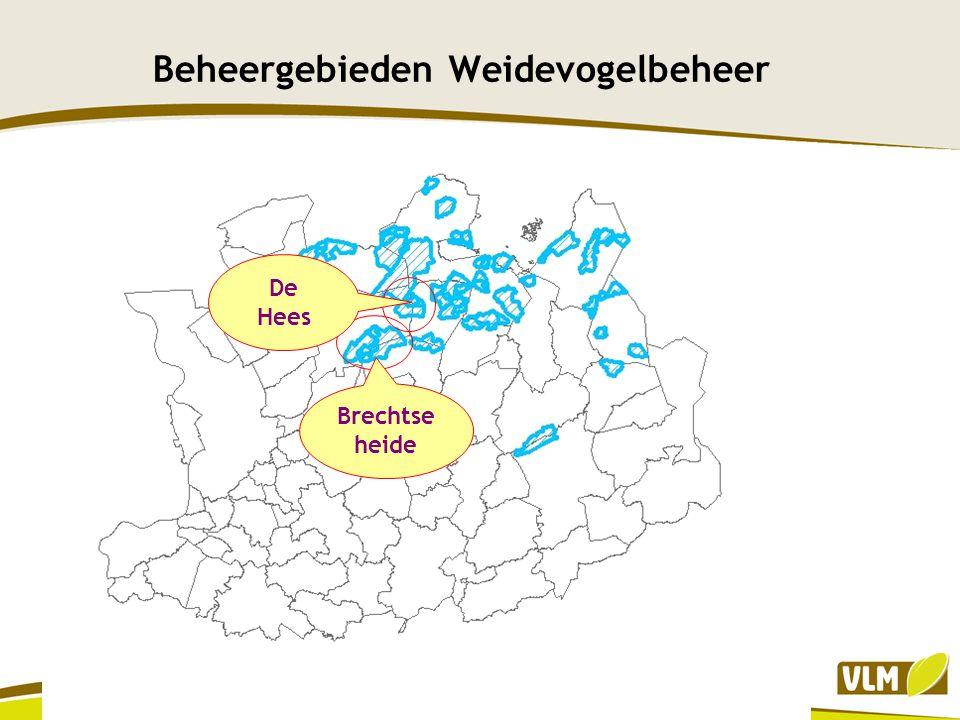 Brechtse Heide Beschermd Landschap vanaf 1977 Goedgekeurd landschapsbeheerplan eind 2009, met actieve commissie vanaf 2008 om alles in goede banen te leiden HAG Bevindt zich op een heuvelrug (32 m), scheiding tussen maas en schelde bekken, met ondiepe kleilaag Hierdoor veel natuurlijke vennen en reliëf