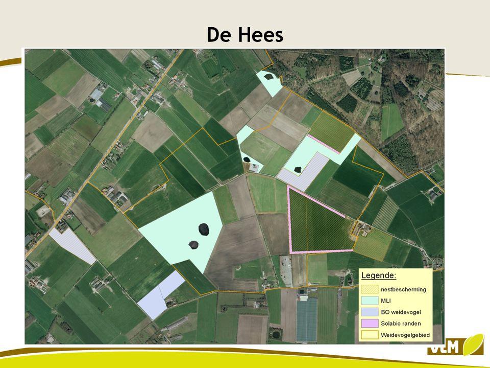 Oppervlakte nestbescherming: 28,96 ha Oppervlakte uitstellen beweidingdatum: 2,94 ha Oppervlakte uitstellen maaidatum : 7,30 ha Solabio randen: 22665 m² MLI: 25 ha Totaal oppervlakte weidevogelbeheer: 66,5 ha