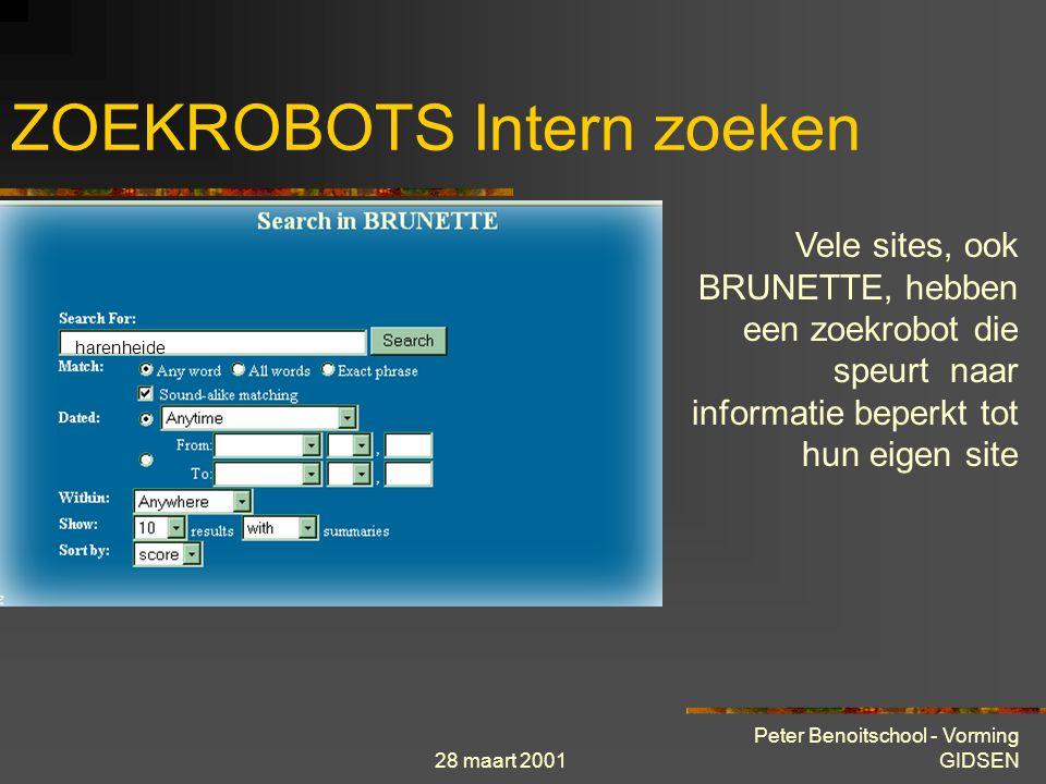 28 maart 2001 Peter Benoitschool - Vorming GIDSEN ZOEKROBOTS Intern zoeken Vele sites, ook BRUNETTE, hebben een zoekrobot die speurt naar informatie beperkt tot hun eigen site harenheide