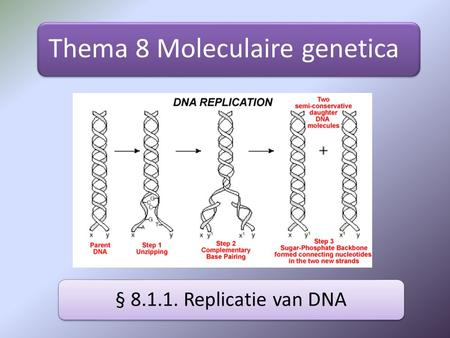 Thema 8 Moleculaire genetica § 8.1.1. Replicatie van DNA.