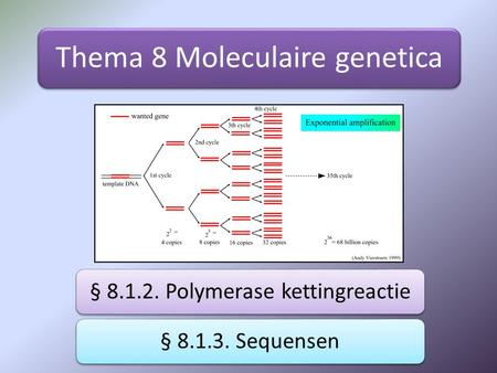Thema 8 Moleculaire genetica § 8.1.2. Polymerase kettingreactie§ 8.1.3. Sequensen.