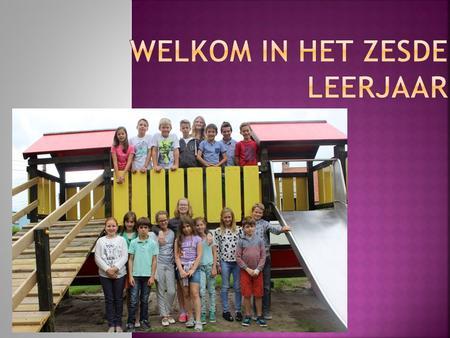 Deontologische code  Vlaamse Vereniging voor Seksuologie vzw