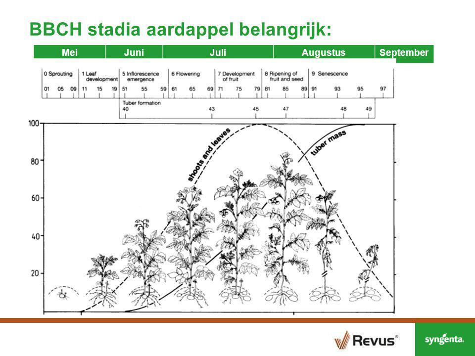 Producten voor de start van de Phytophthora bestrijding in 2015 BBCH 31 = 10% planten tussen rijen beginnen elkaar te raken, BBCH 40 = gesloten gewas