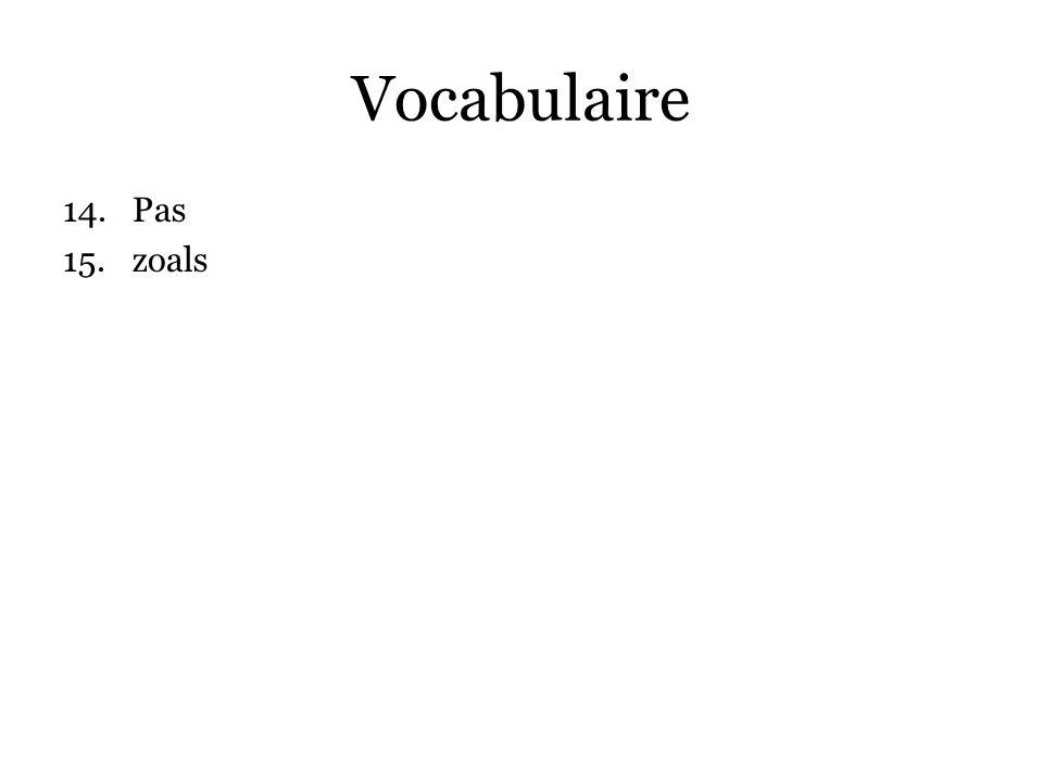 Vocabulaire 14.Pas 15.zoals 16.overigens