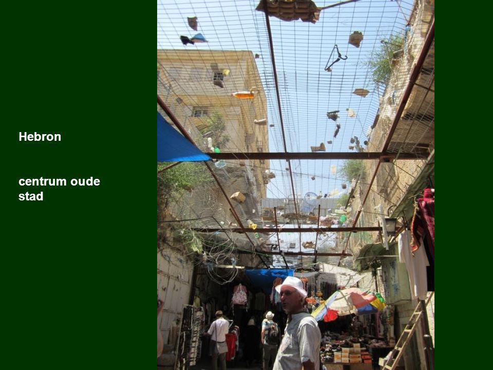 Tel Rumeida De kolonie in het centrum van Hebron Kolonisten nemen de huizen in beslag Het leger beschermt de kolonisten Kolonisten rijden met hun auto's in de stad De Palestijnen die er nog wonen, mogen enkel tevoet aan een klein stukje van de straat