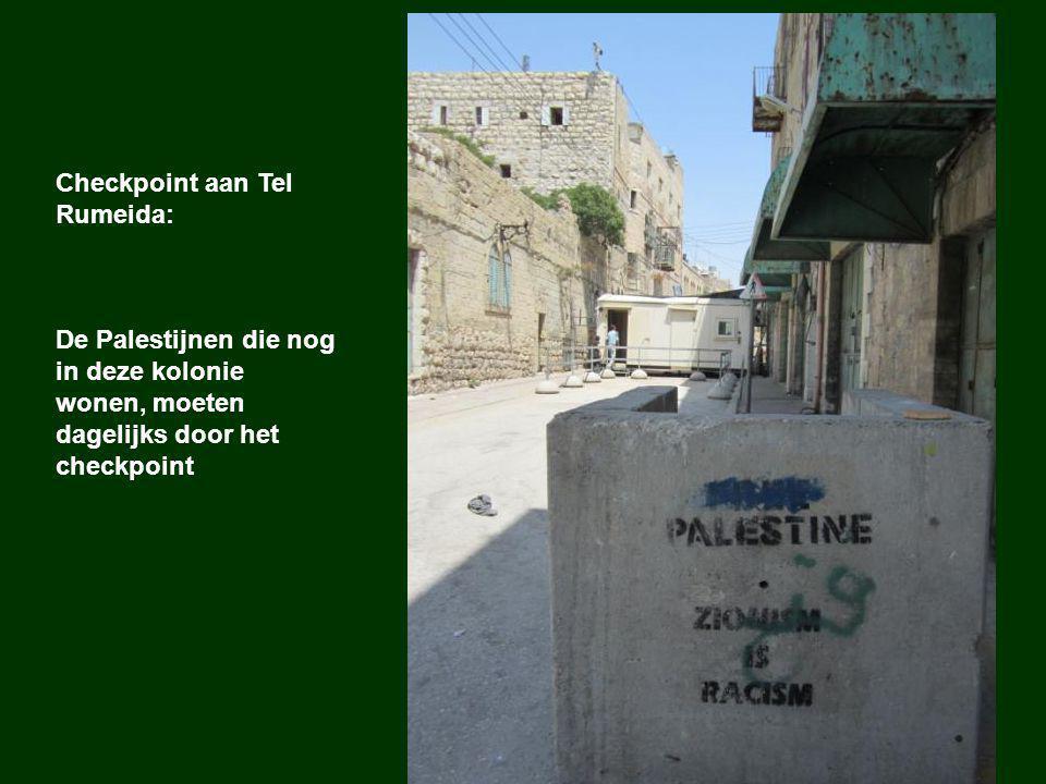 Kolonisten zagen druivelaars van Palestijnen door