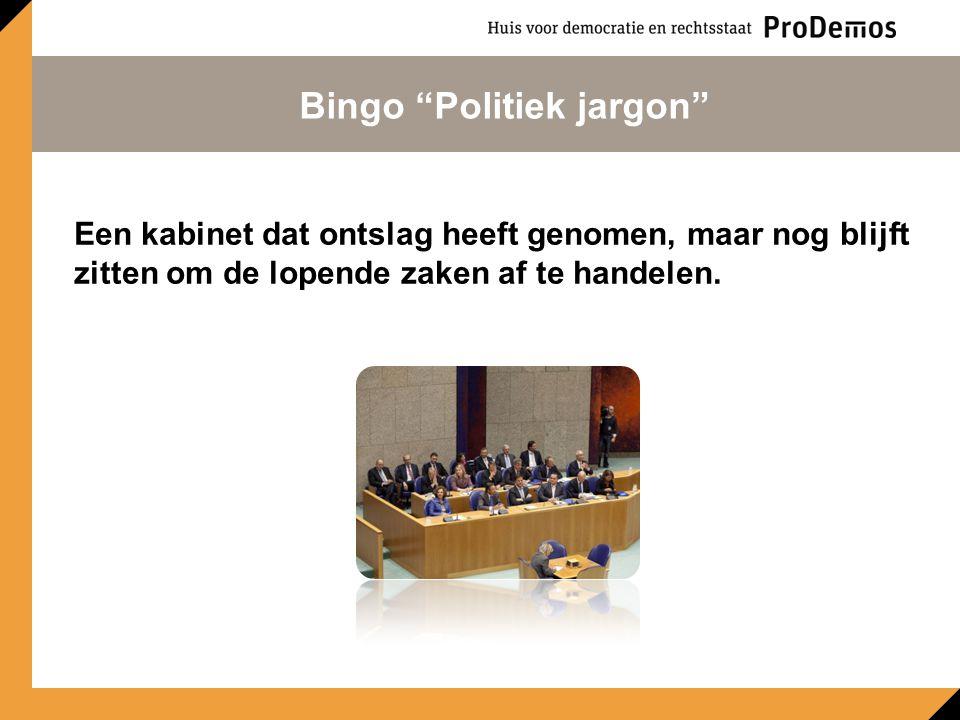 Een ander woord voor Eerste Kamer. Bingo Politiek jargon