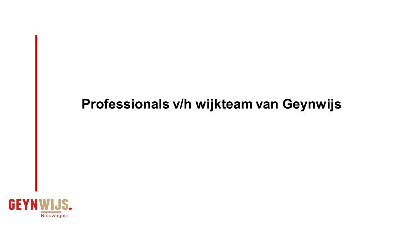 Kortdurende interventie en gesprek Substitutie en nieuwe arrangementen Coördinatie en regie Functies Geynwijs Professionals