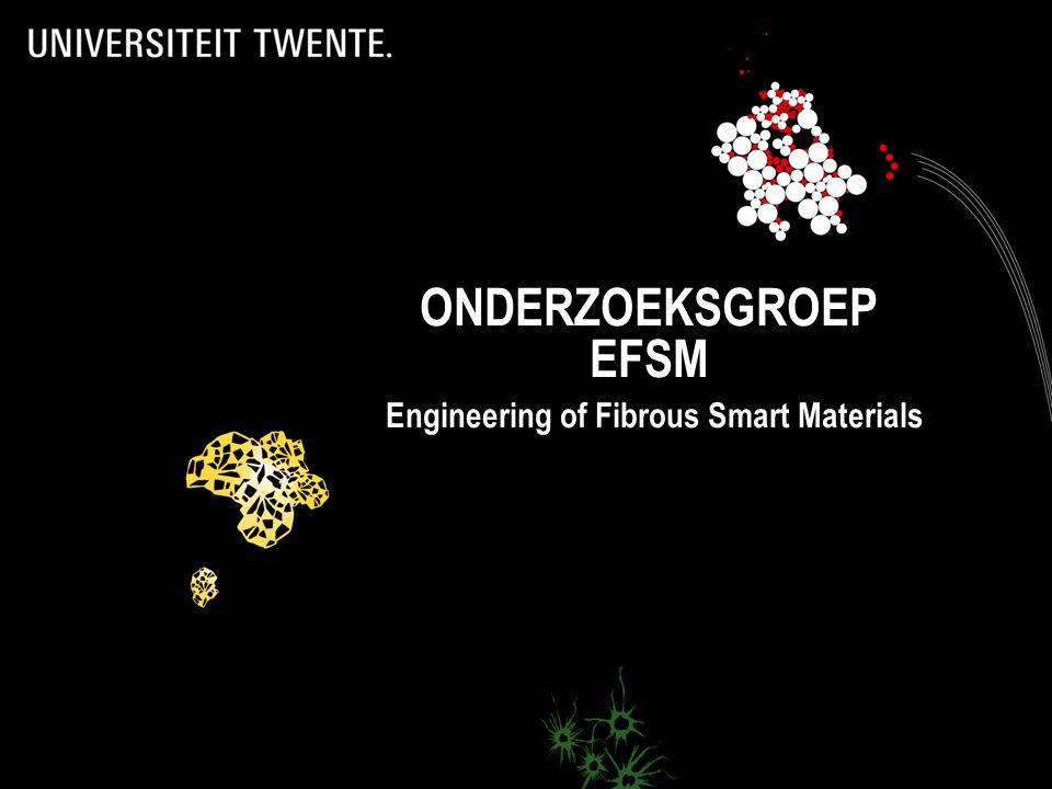 www.ctw.utwente.nl/efsm