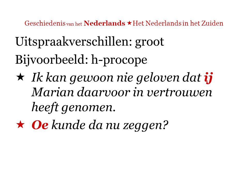 Geschiedenis van het Nederlands  Het Nederlands in het Zuiden Lexicale verschillen: meer dan standaardtaalverschillen N vs.